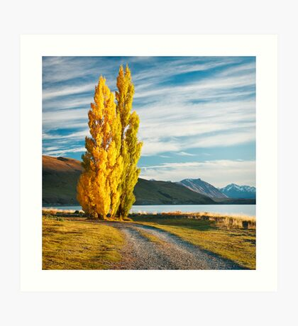 Tekapo Morning Art Print