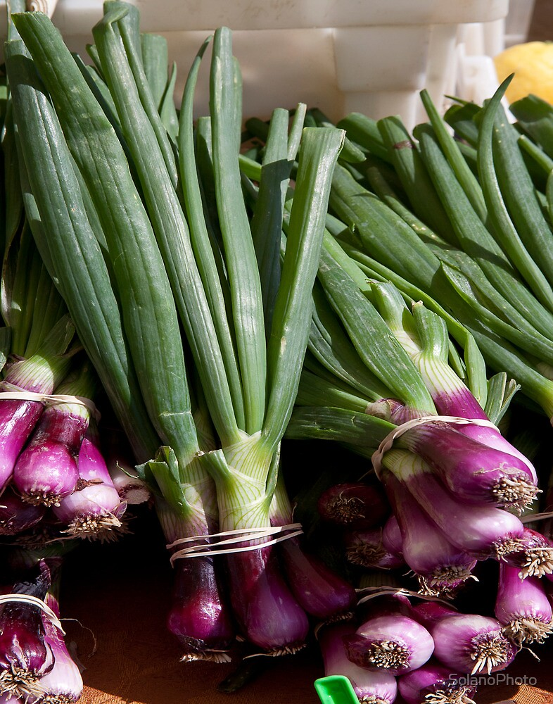 Green Onions by SolanoPhoto