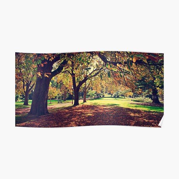 Tones of Autumn in Ballarat Poster
