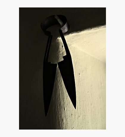 Shears Photographic Print