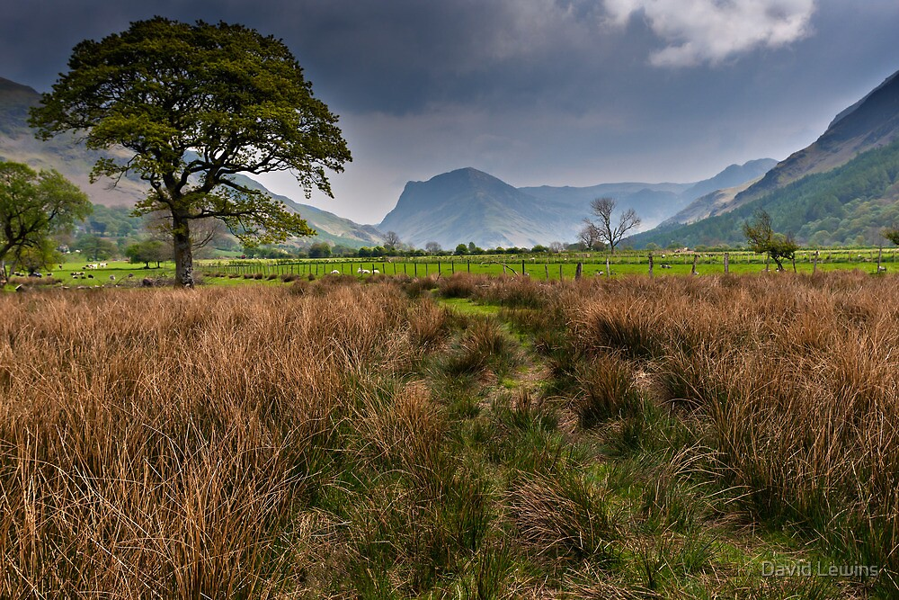 Fleetwith Pike, Buttermere. Cumbria. UK by David Lewins