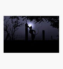 Midnight Rendezvous  Photographic Print