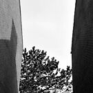 Between the walls by Jean-Luc Rollier