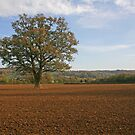 Middle England by RedHillDigital
