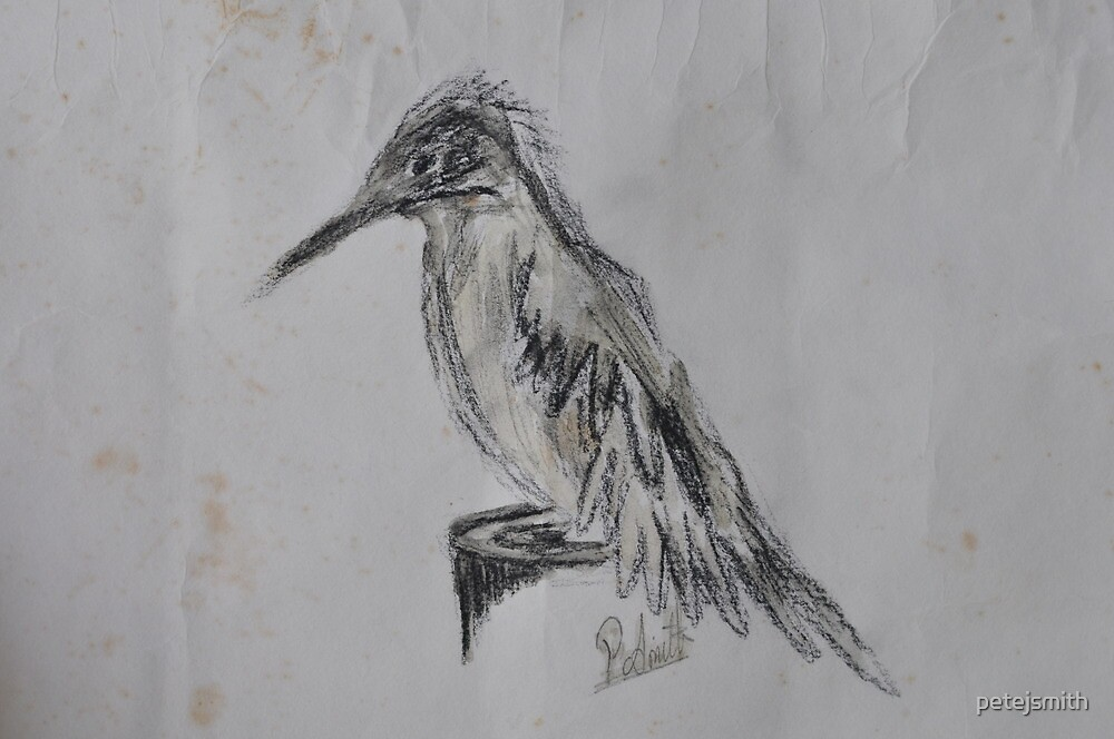 Woodpecker by petejsmith