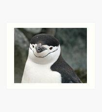 Chinstrap penguin 15 Art Print