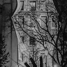 Night Fright by Gerda Grice