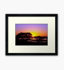 Rose cast over the horizon Framed Print