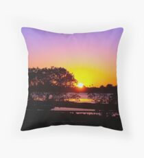 Rose cast over the horizon Throw Pillow