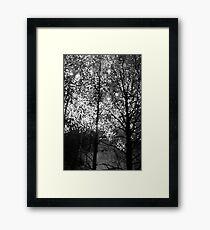 Valborg #7 Framed Print