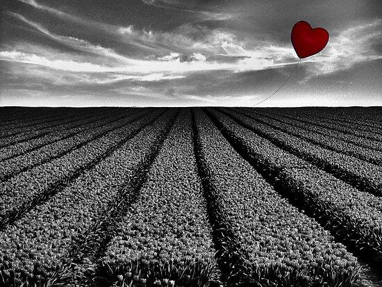 My Heart Will Go On... by Carol Knudsen