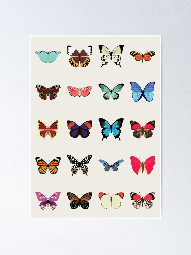Alternate view of Butterflies Poster