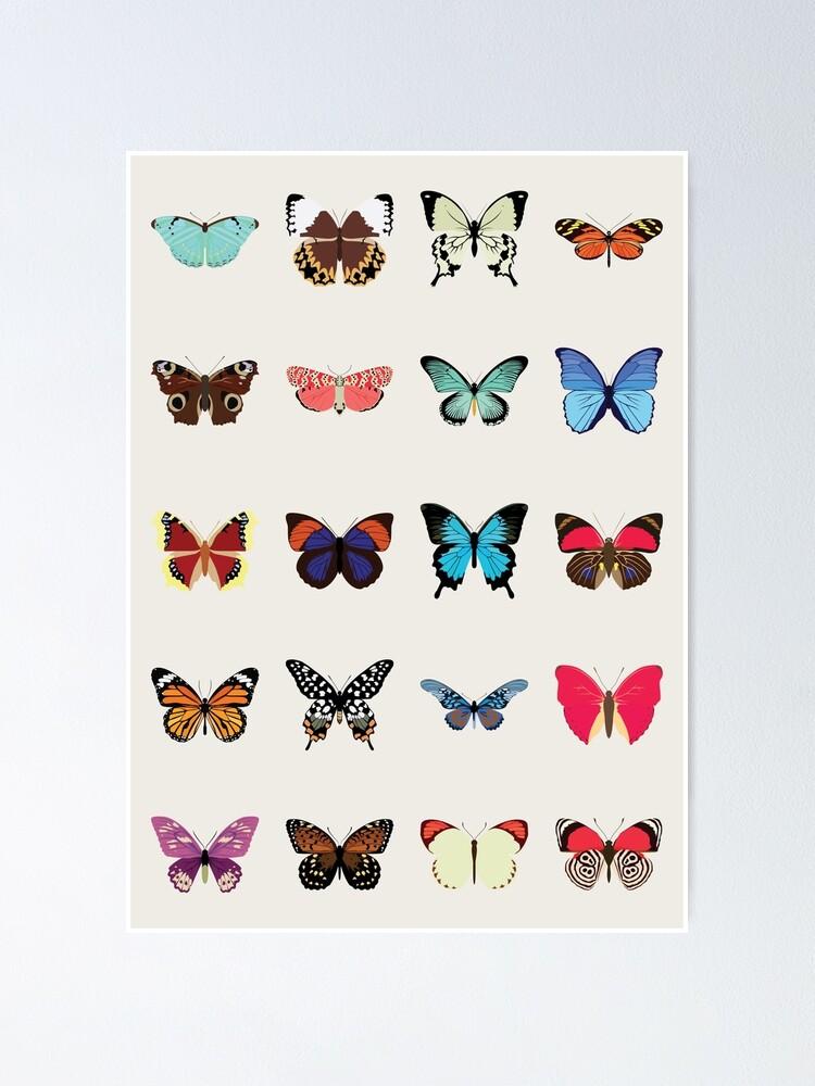 Alternate view of Butterflies Poster