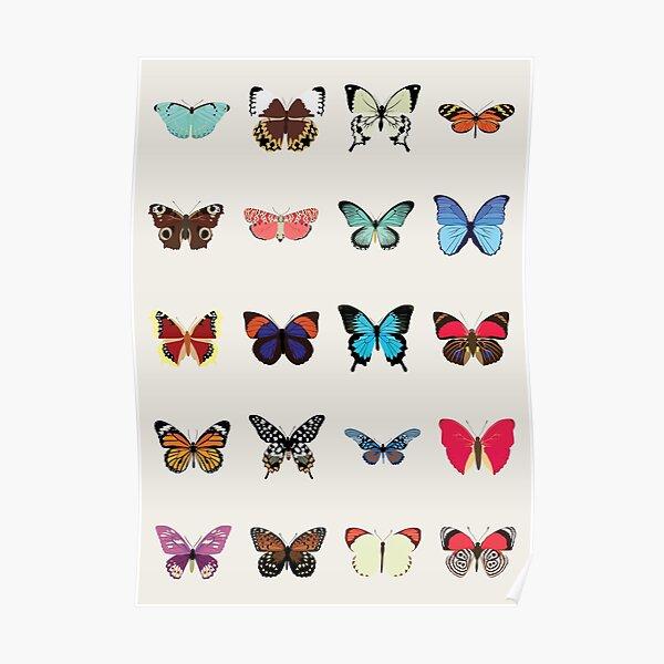 Schmetterlinge Poster