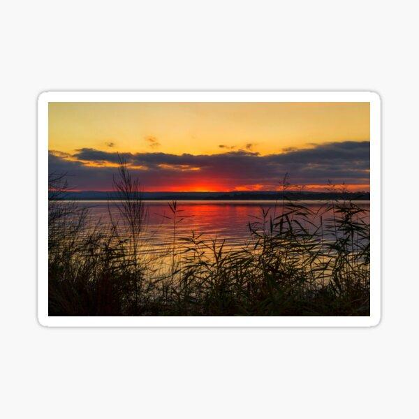 Sleepy Sunset  Sticker