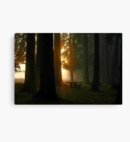Dawn At McKercher Park Canvas Print