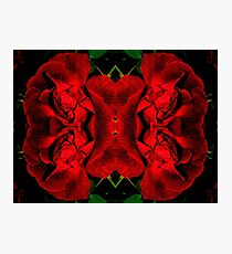 Red Corset Photographic Print