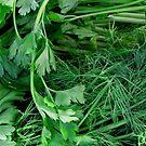 Organically Green by Janie. D