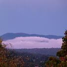 Mountain Mist by DEB CAMERON