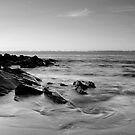 Flow by Patrick Reid