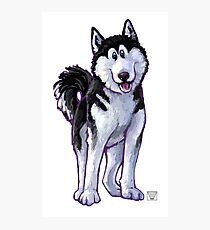 Animal Parade Husky Silhouette Photographic Print