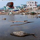 JAPAN  Earthquake, tsunami scars (1) by yoshiaki nagashima