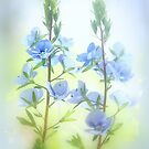 Blue flowers by aMOONy