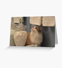 I'm Not Here...You Don't See Me! Greeting Card