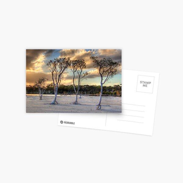 Sunset At Lake Poorrarecup # 2 Postcard