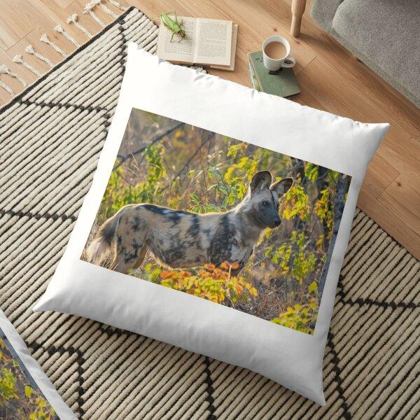 African Painted Dog #2, Hwange National Park, Zimbabwe Floor Pillow