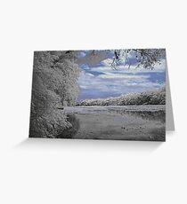 Wekiva River Greeting Card