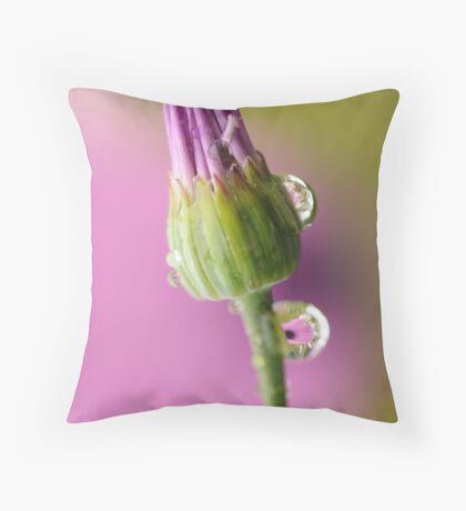Fragile ~ Throw Pillow