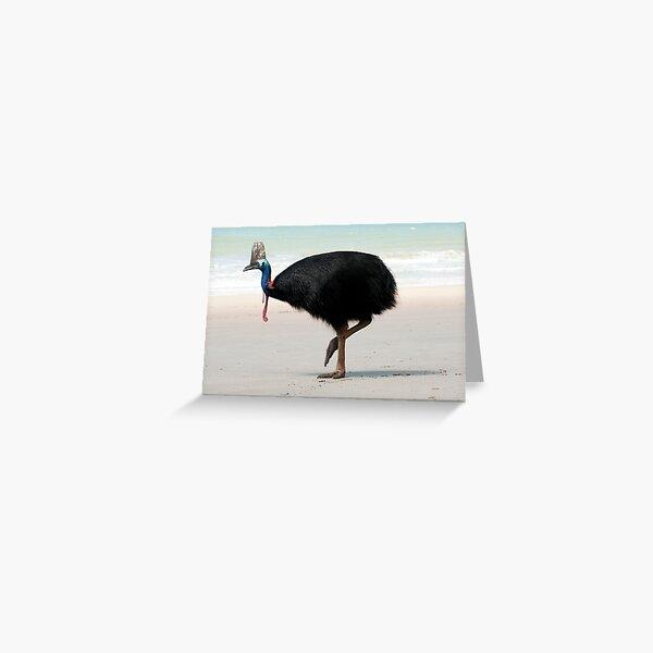 Etty Bay Cassowary 2 Greeting Card