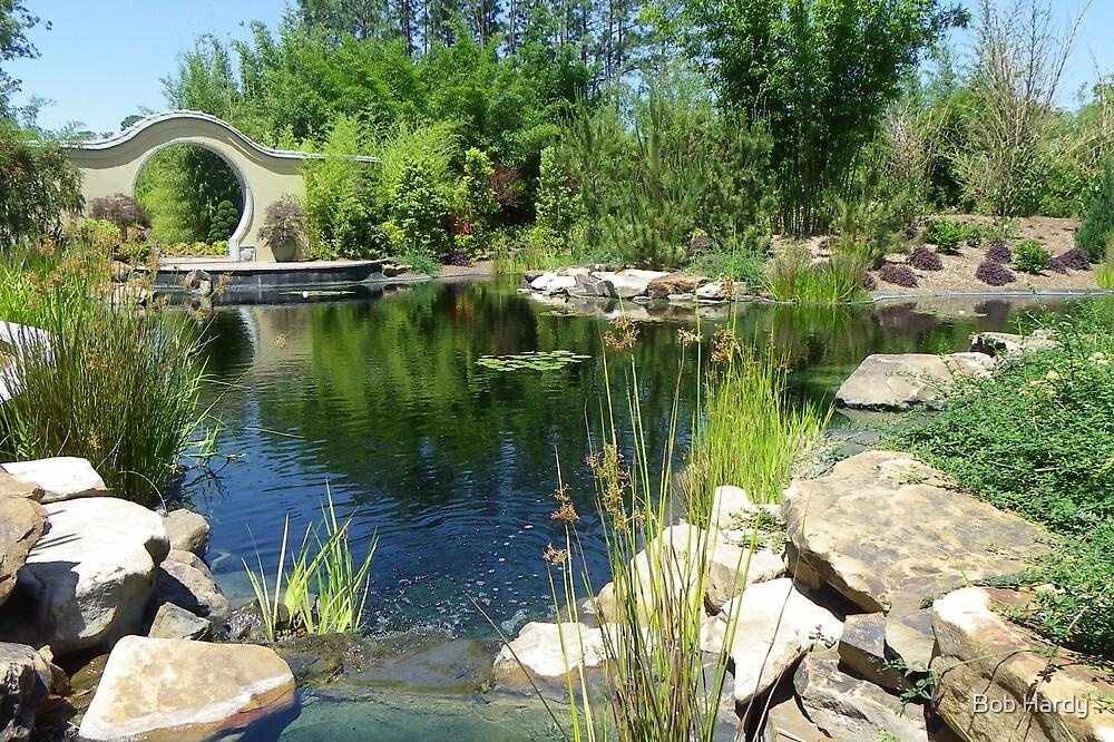 Asian Koi Pond by Bob Hardy