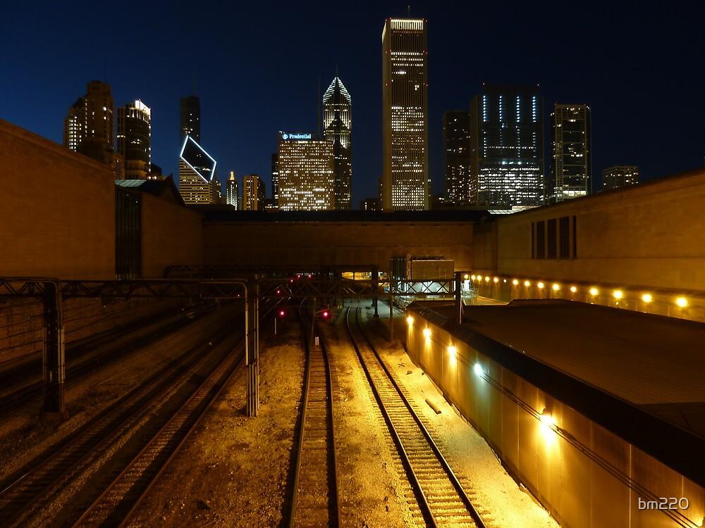 Chicago Night Skyline by bm220
