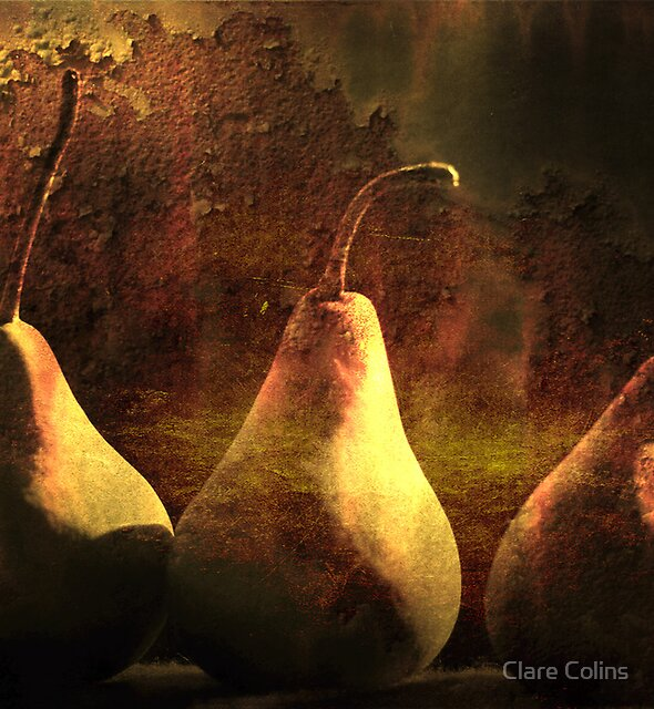 autumn pears by Clare Colins