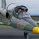 Going adventuring, l-39 jet trainer, Australia. by johnrf