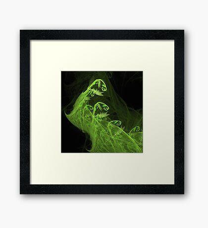 Fiddlehead Forest Framed Print