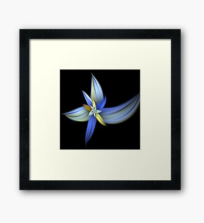 Tawny Blue Lily Framed Print