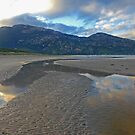 Tidal River Inlet, Wilsons Promontory by Catherine Davis