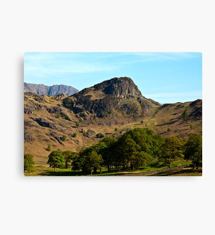 Side Pike from Blea Tarn - Lake District Canvas Print