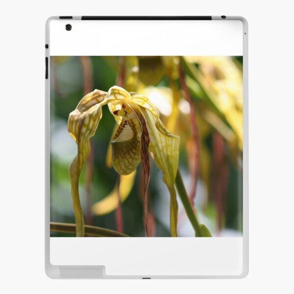 Peruvian Orchid  iPad Skin