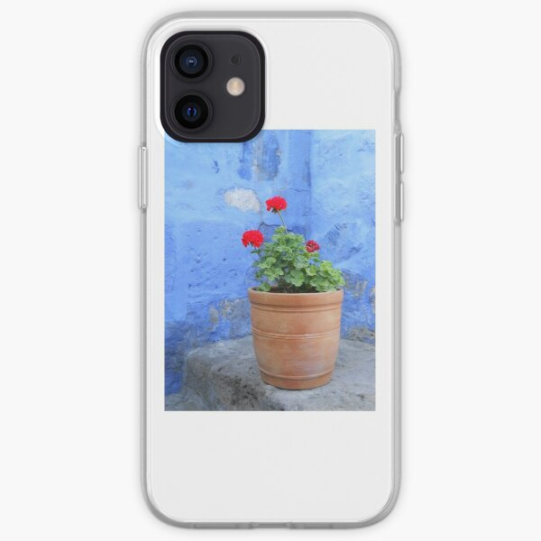 Red Geranium in Terracotta Pot with Contrasting Blue Wall iPhone Soft Case