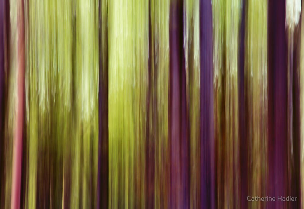 Woodland Abstract by Catherine Hadler