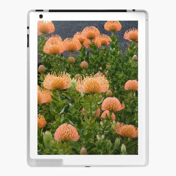 African Protea Flower iPad Skin