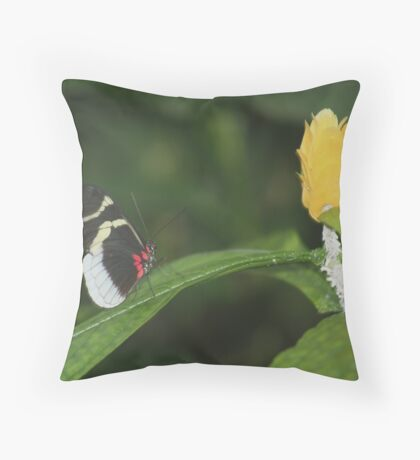 Butterfly & Bloom Throw Pillow