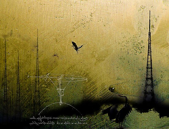 Theory of Flight - Blue Herons by Nicolas  Hall