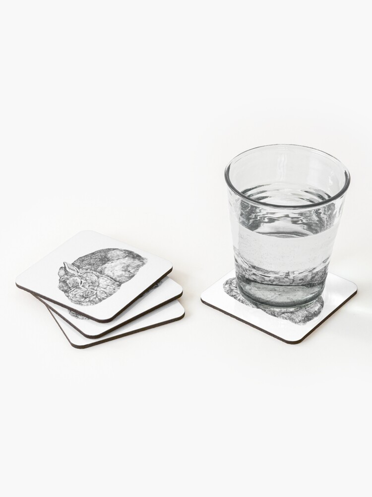 Alternate view of Roger Coasters (Set of 4)