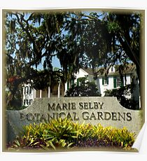 Marie Selby Botanical Gardens ~ Part Two Poster