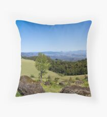 Duck Creek Road Throw Pillow